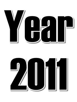 Year 2011 (4)