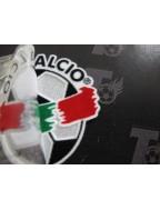 2003-2004 Serie A Badge